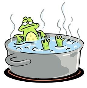 Risultati immagini per la metafora della rana bollita